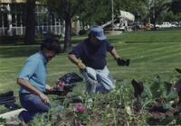 Beautification Project At Redwood Campus