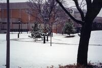 Lifetime Activities Center in the Winter from the Quad