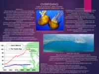 2018 - Overfishing - Poster Presentation