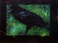 Tony Smitt: Raven Paintings, Landscape Paintings